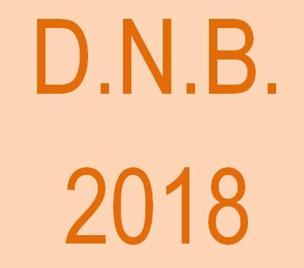 DNB 2018