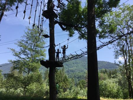 Les CP dans les arbres